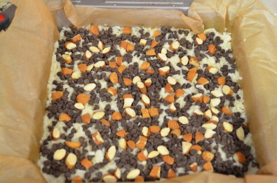 Almond Joy Bars before baking