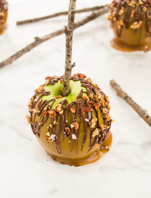 Front view of turtle caramel apple
