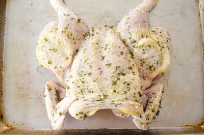 how-to-spatchcock-a-chicken-and-why-you-should-do-it11 | flavorthemoments.com