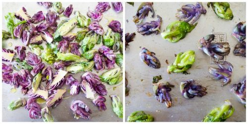 Kalettes on a baking sheet