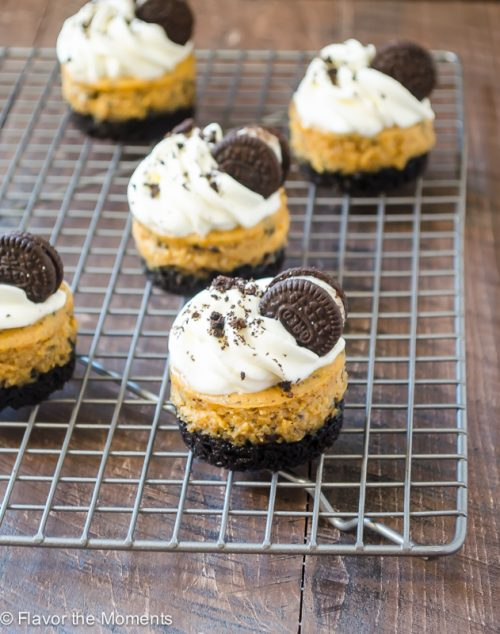 Mini Cookies \'N Cream Pumpkin Cheesecakes on wire rack