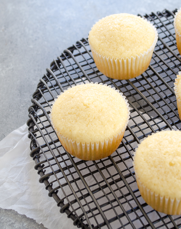Unfrosted vanilla cupcakes on wire rack