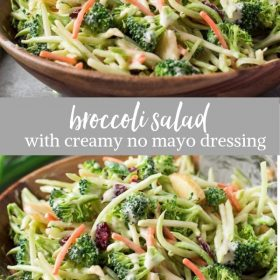 Broccoli Slaw Salad with Creamy No Mayo Dressing is broccoli florets and broccoli slaw with apple, cranberries and almonds in a creamy no mayo dressing! {GF, DF, V}