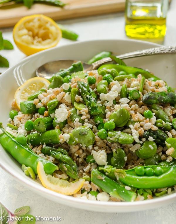 Spring Farro Salad closeup