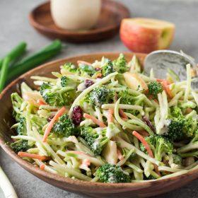 Broccoli Slaw Salad with Creamy No Mayo Dressing is a broccoli florets and broccoli slaw with apple, cranberries and almonds in a creamy no mayo dressing! {GF, DF, V}