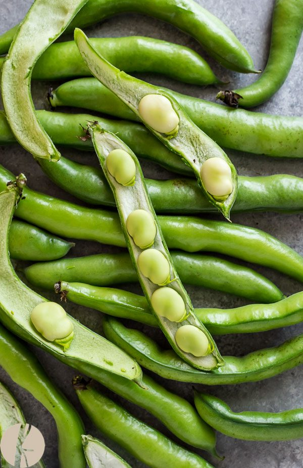 Fava beans piled up with top ones cut in half