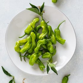 Produce of the Month Guide: Shishito Peppers is an informative produce guide about shishito peppers along with a round up of 17 delicious recipes!