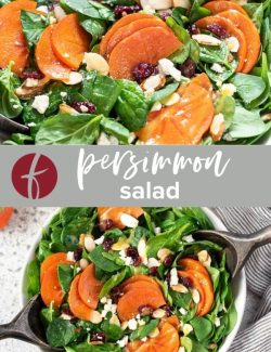 Persimmon salad collage pin