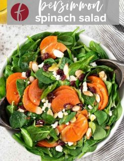 Persimmon Salad pin