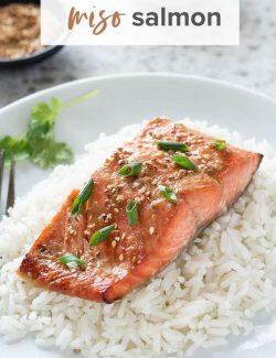Miso salmon pin 2