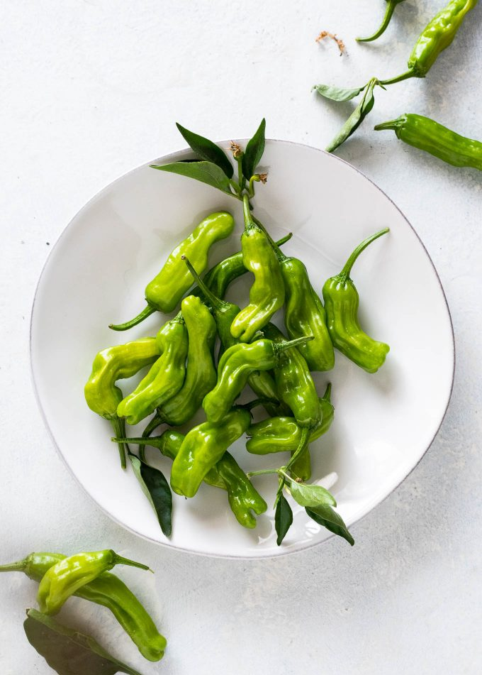 Shishito peppers on a white plate