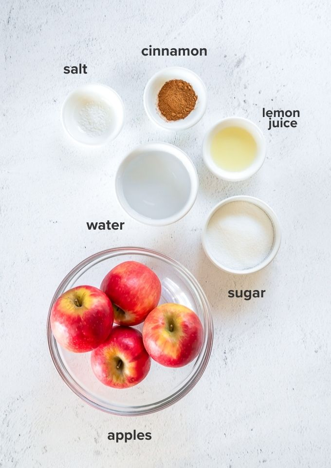 Easy homemade applesauce recipe ingredients